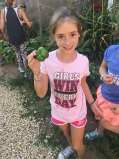 Fresh vegetables from the garden!